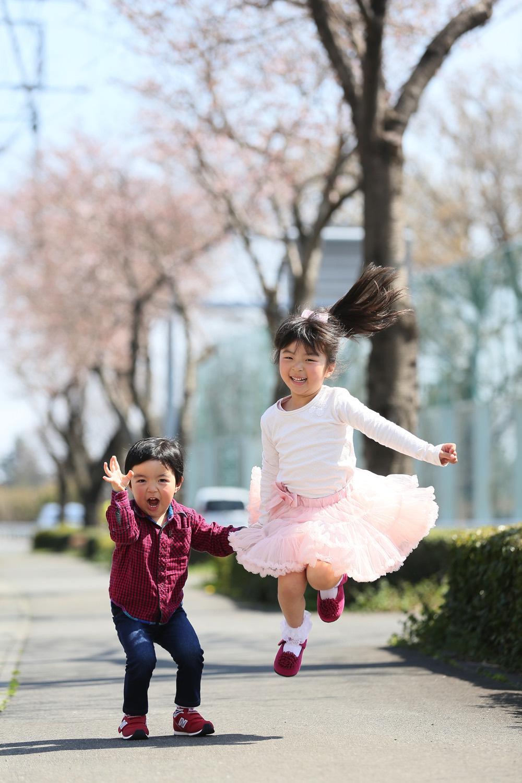 群馬の桜写真
