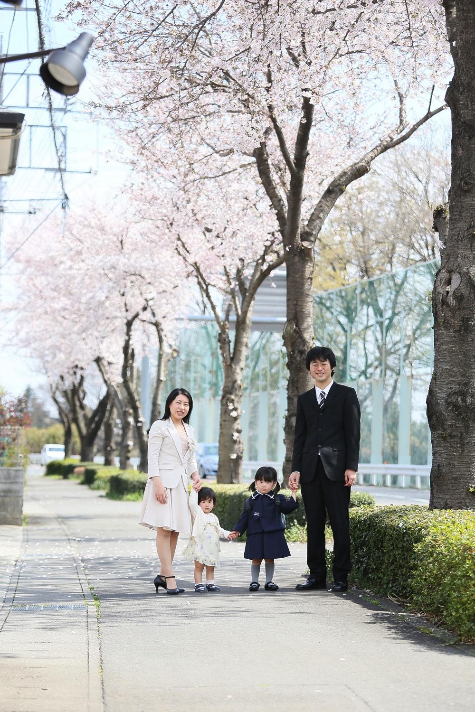 桜のロケーション撮影